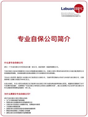 A Guide to Captive Insurance (Simplified Chinese)